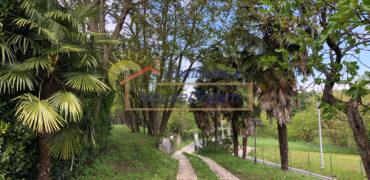Affittasi Bi/Trilocale in Villa – Arona (NO) – Rif.S30